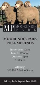 2018 Moorundie Park On Property Catalogue